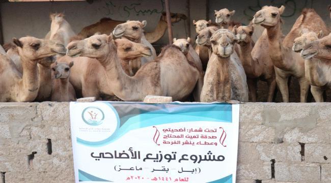 مؤسسة صنائع المعروف الأنسانية - حضرموت بالشراكة مع مؤسسة سواعد الخير الإنسانية يدشنان مشروع الأضاحي في عدن* .